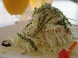 「季節のサラダ」日替わりメニュー