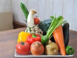 オーガニックの元気な野菜たち