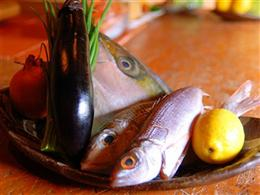 毎日のオススメ近海魚