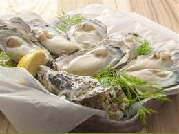 日本各地32箇所からその時一番の牡蠣を!