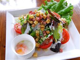 旬の県産食材をふんだんに取り入れたサラダ