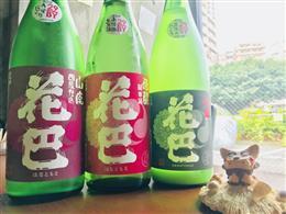いちおし日本酒 揃えております