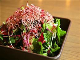 沖縄の島野菜を使ったお料理も