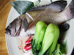 海人直送 近海魚のマース煮