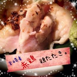 宮崎県産!鶏タタキ!