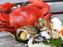 ガサミ、サザエ、シャコ貝等地元の魚介も豊富です