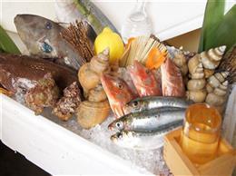 毎日新鮮な魚介を仕入れてます!