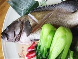 石垣島の近海魚、揃えております!