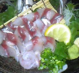 新鮮な魚介類を使い、調理しています