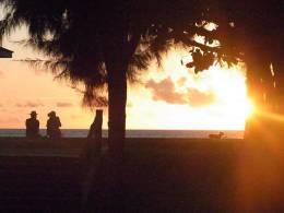 夕日に染まる風景をのんびりと眺める贅沢な時間も堪能