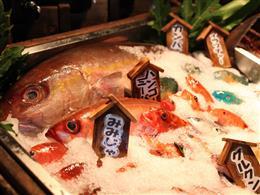 種類も調理法も選べて大満足、獲れたて鮮魚<いまいゆ>料理