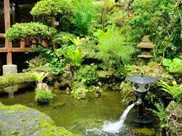 池を抱いた緑の庭の眺めに心和む