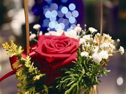 12月24日は卓上花をプレゼント!