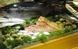朝獲れ 超新鮮!鮮魚です。