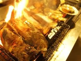 産直鮮魚の炭火炙り!!