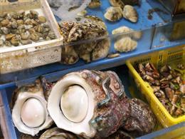 生簀にはその日に仕入れた新鮮な魚介が並びます